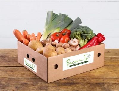 M2 - ladita legume sezon  (2 pers)
