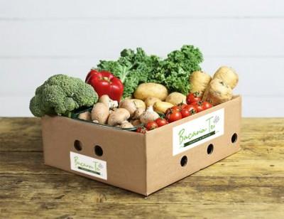 M3 - ladita legume  (2 pers)