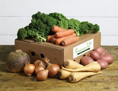 M5 - Ladita de legume (4 pers)