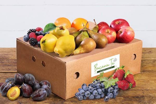 Ladita Cu Fructe De Sezon (Mica) 6