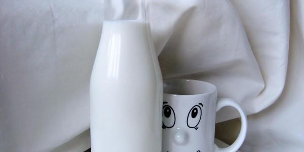 Ayran din lapte de bivolita