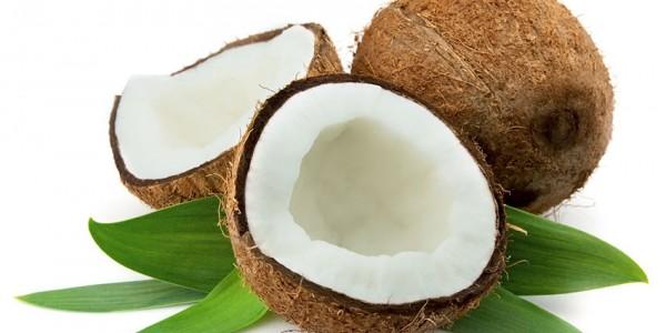 Nuca Cocos