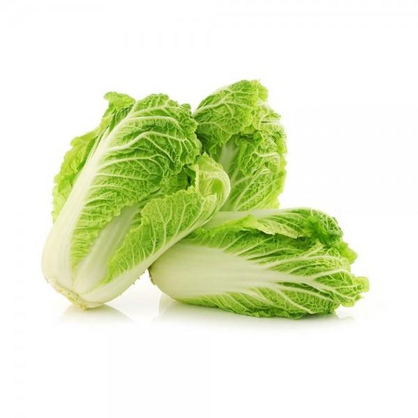 Salata China