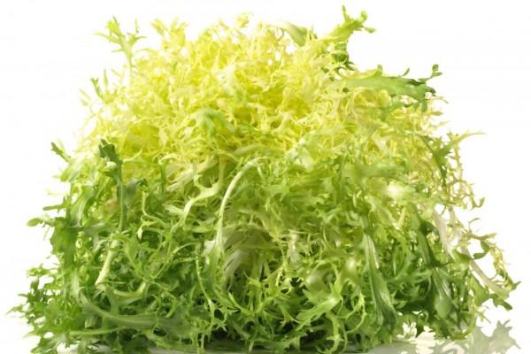 Salata Freisse