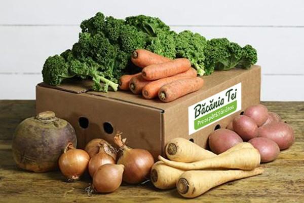 Lădiță Pentru Salată Extra Vitamine W18