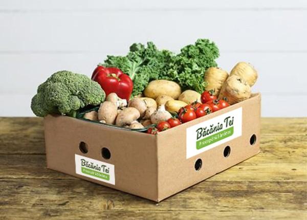Lădiță Pentru Salată Extra Vitamine W22 (1 buc.)