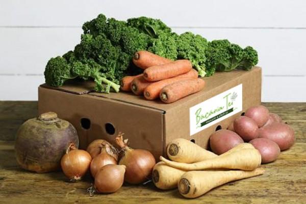 Lădiță Mix Antioxidanți (Mica) W24