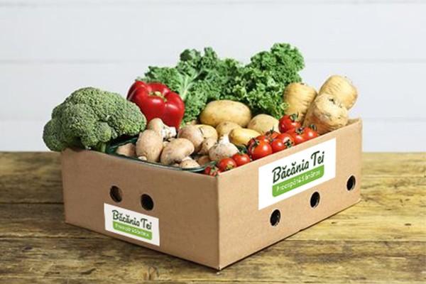 Lădiță Pentru Salată Extra Vitamine W37